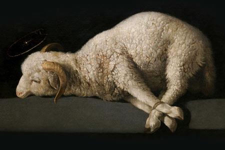 2 Niedziela zwykła - Rok A - Oto Baranek Boży