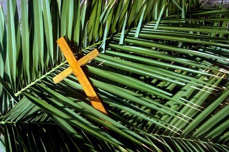 Niedziela Męki Pańskiej - Rok A – Wjazd Chrystusa do Jerozolimy