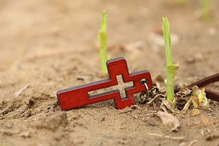 Odnowienie ducha - Kiełkujące ziarno - Polska Parafia w Londynie